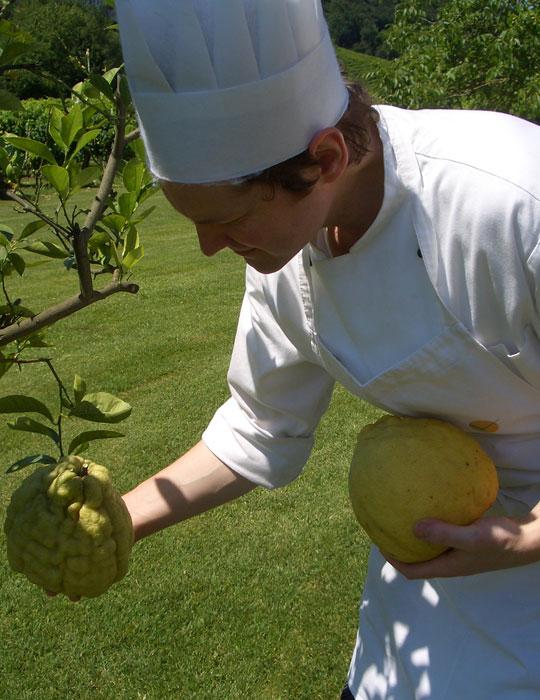 Cucina E Prezzi Ristorante Verdegaio La Vita E Interpretazione